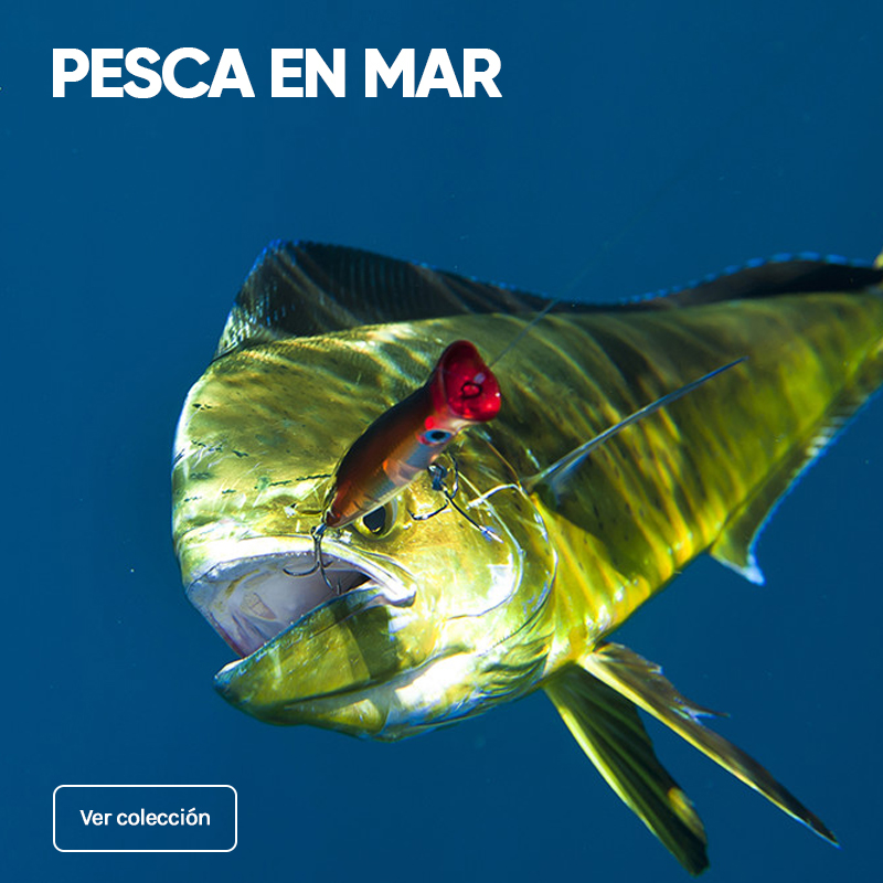 productos de pesca en mar